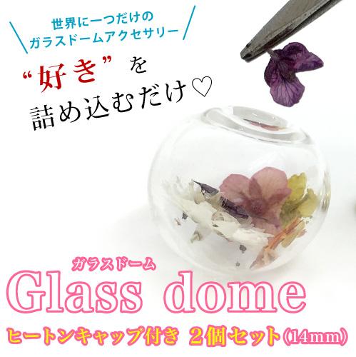 世界で一つのガラスドーム