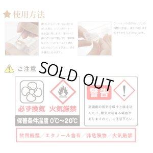 画像2: 【25%オフ!】パジコ 拭き取り液 レジンクリーナー 宅急便発送のみ 30543