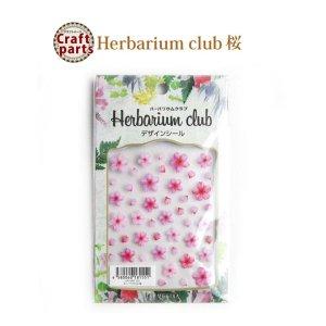 画像1: ハーバリウムクラブ h18 桜 HR-SKR-101 81551