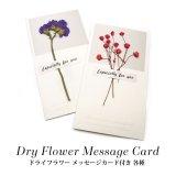 ドライフラワー メッセージカード付き 各種 22-33