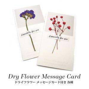 画像1: ドライフラワー メッセージカード付き 各種 22-33