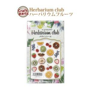 画像1: ハーバリウムクラブ h19 ハーバリウムフルーツ HR-HRF-101 82060