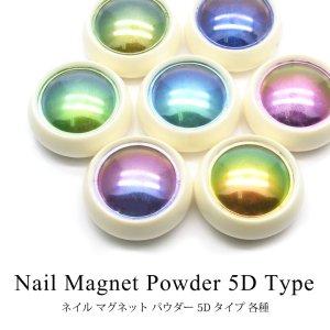 画像1: ネイル マグネット パウダー 5Dタイプ 各種ケース入り